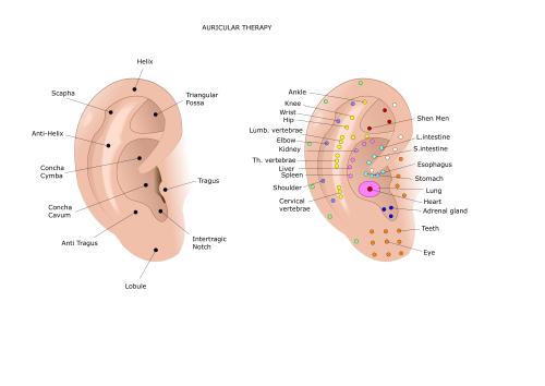Ear acu